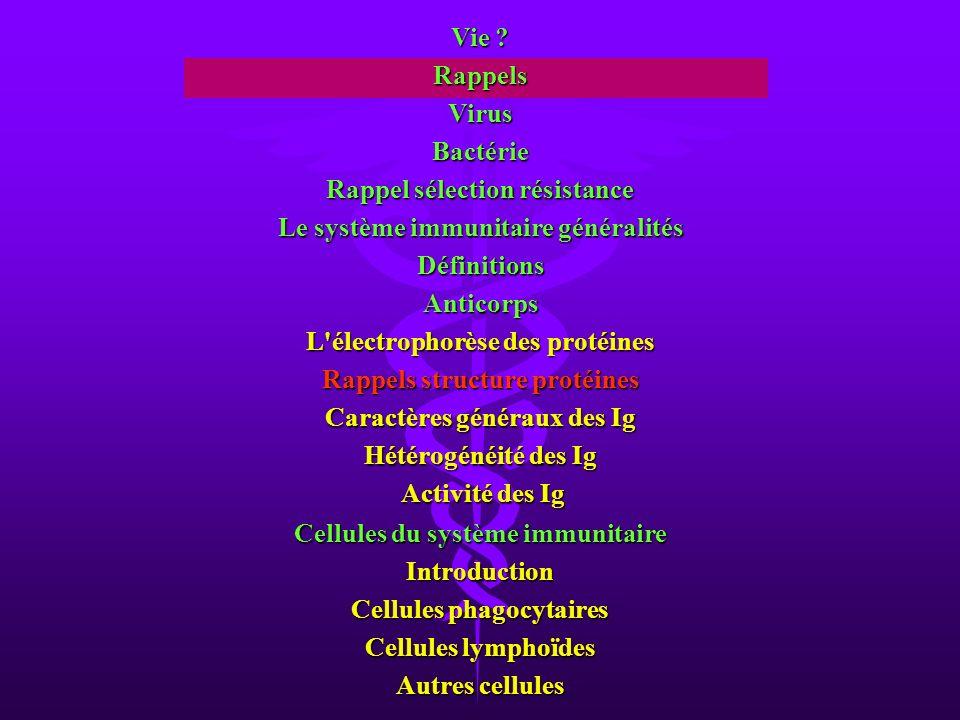 Une bactérie ou bacille est un organisme procaryote (sans noyau).