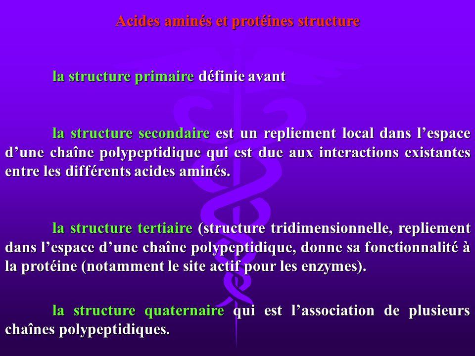 la structure quaternaire qui est lassociation de plusieurs chaînes polypeptidiques. Acides aminés et protéines structure la structure primaire définie