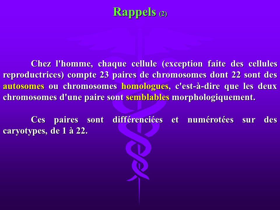 Chez l'homme, chaque cellule (exception faite des cellules reproductrices) compte 23 paires de chromosomes dont 22 sont des autosomes ou chromosomes h