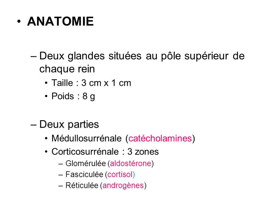 ANATOMIE –Deux glandes situées au pôle supérieur de chaque rein Taille : 3 cm x 1 cm Poids : 8 g –Deux parties Médullosurrénale (catécholamines) Corti