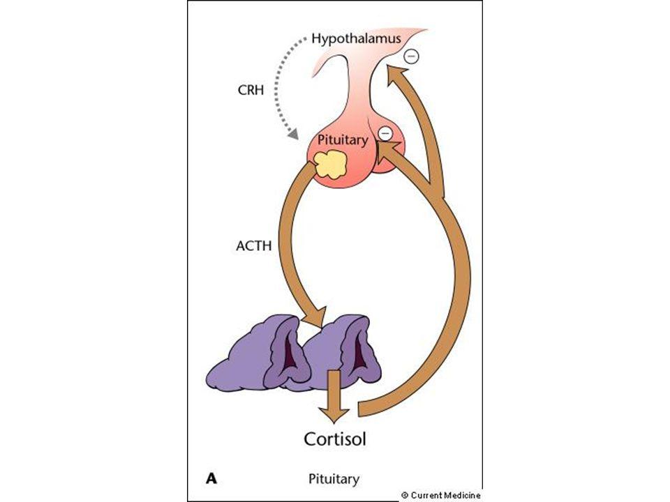 Causes –Maladie de Cushing Adénome hypophysaire à ACTH Androgènes et minéralocorticoïdes normaux Diagnostic : scanner ou IRM hypophyse –Tumeur surrénalienne Adénome bénin Corticosurrénalome (malin) ACTH indosable Diagnostic : échographie, scanner ou IRM surrénales –Syndrome paranéoplasique Sécrétion ectopique dACTH Biologie : idem maladie de Cushing mais hypophyse normale K anaplasique à petites cellules du poumon, K pancréas, K digestif…