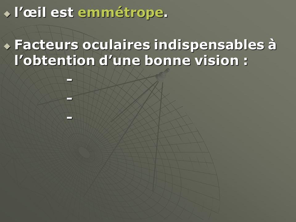 lœil est emmétrope. lœil est emmétrope. Facteurs oculaires indispensables à lobtention dune bonne vision : Facteurs oculaires indispensables à lobtent