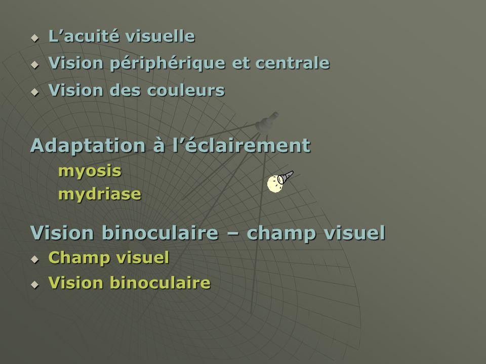 Lacuité visuelle Lacuité visuelle Vision périphérique et centrale Vision périphérique et centrale Vision des couleurs Vision des couleurs Adaptation à