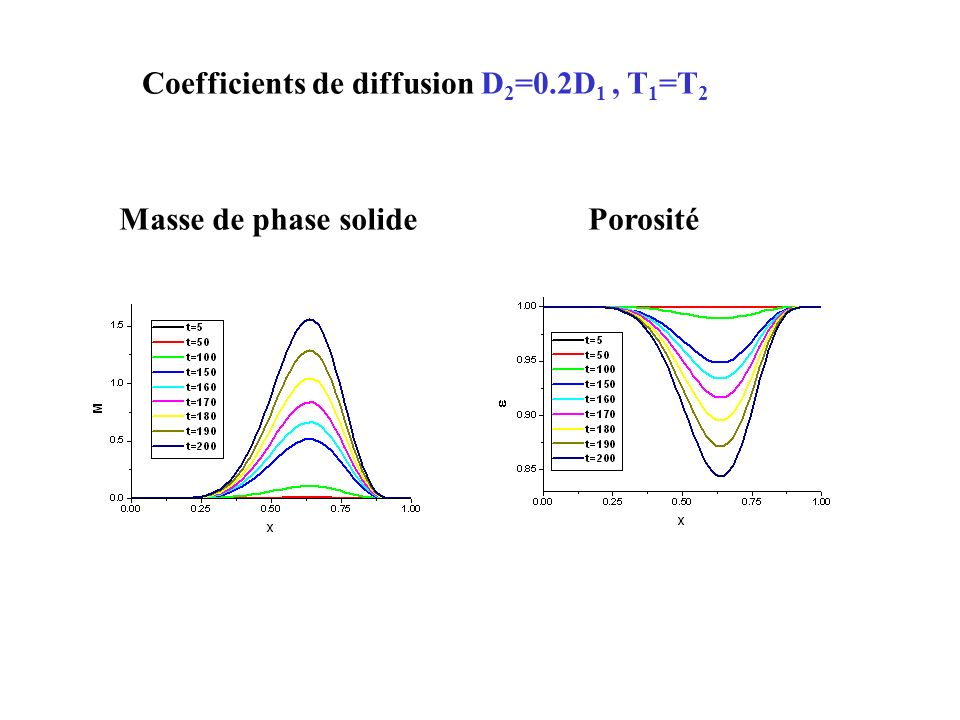 Coefficients de diffusion D 2 =0.2D 1, T 1 =T 2 Masse de phase solidePorosité