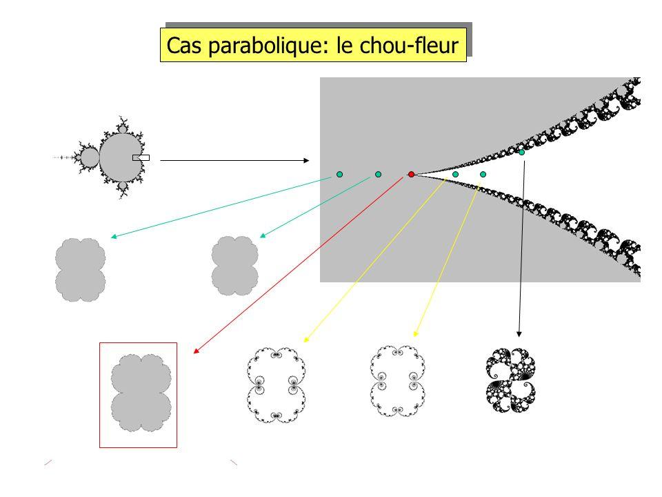 Cas parabolique: le chou-fleur