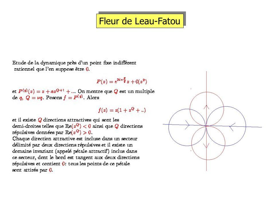Fleur de Leau-Fatou