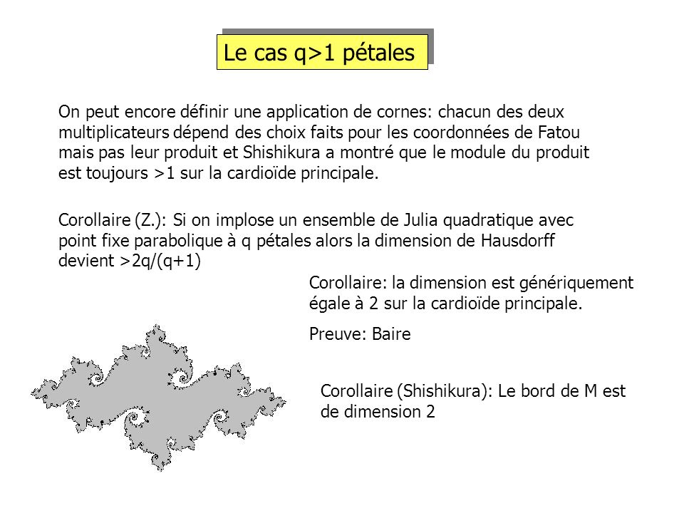 Le cas q>1 pétales On peut encore définir une application de cornes: chacun des deux multiplicateurs dépend des choix faits pour les coordonnées de Fa