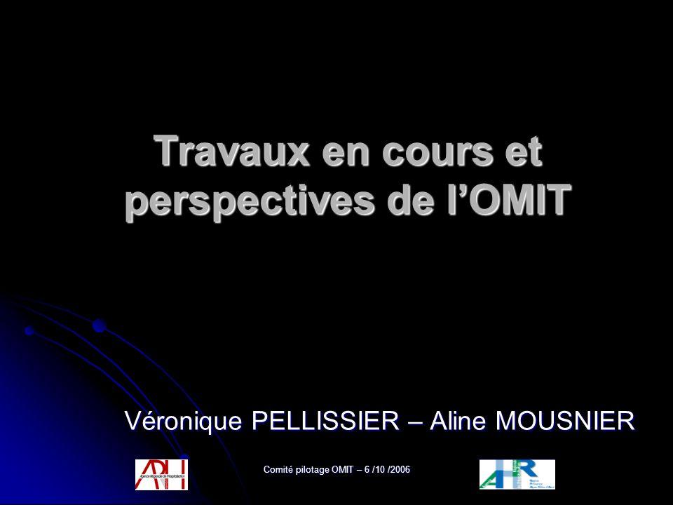 Comité pilotage OMIT – 6 /10 /2006 Travaux en cours et perspectives de lOMIT Véronique PELLISSIER – Aline MOUSNIER