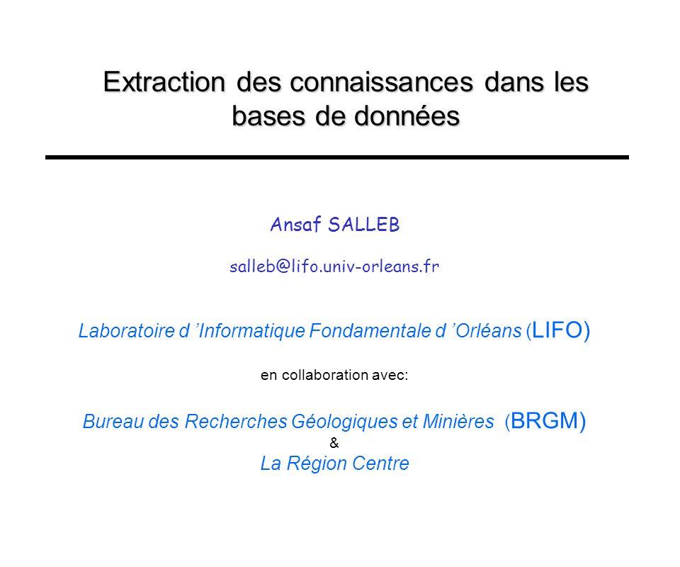 Extraction des connaissances dans les bases de données Ansaf SALLEB salleb@lifo.univ-orleans.fr Laboratoire d Informatique Fondamentale d Orléans ( LI