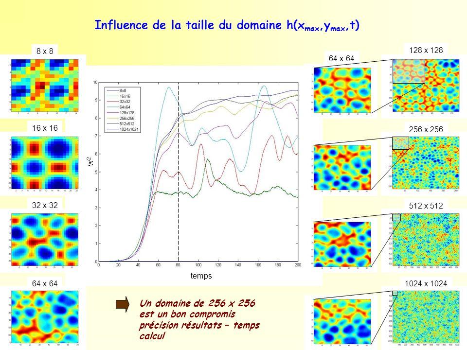 64 x 64 Influence de la taille du domaine h(x max,y max,t) 8 x 8 16 x 16 32 x 32 64 x 64 128 x 128 256 x 256 512 x 512 1024 x 1024 temps w2w2 Un domai