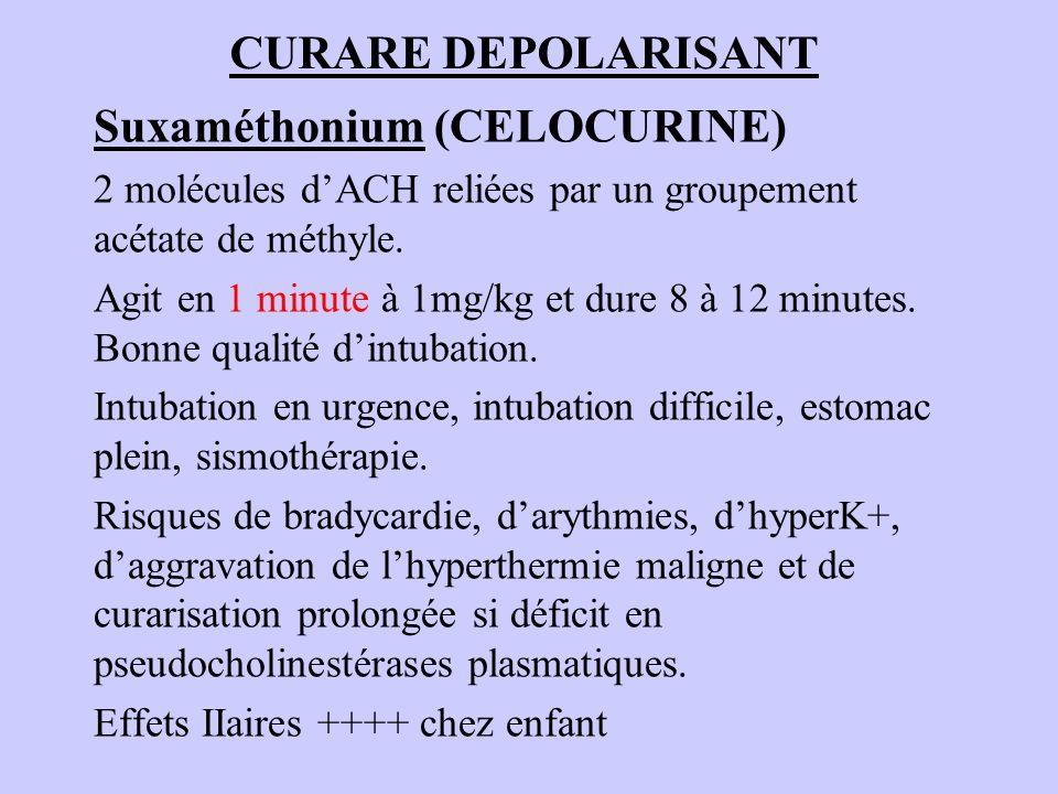 CURARE DEPOLARISANT Suxaméthonium (CELOCURINE) 2 molécules dACH reliées par un groupement acétate de méthyle. Agit en 1 minute à 1mg/kg et dure 8 à 12