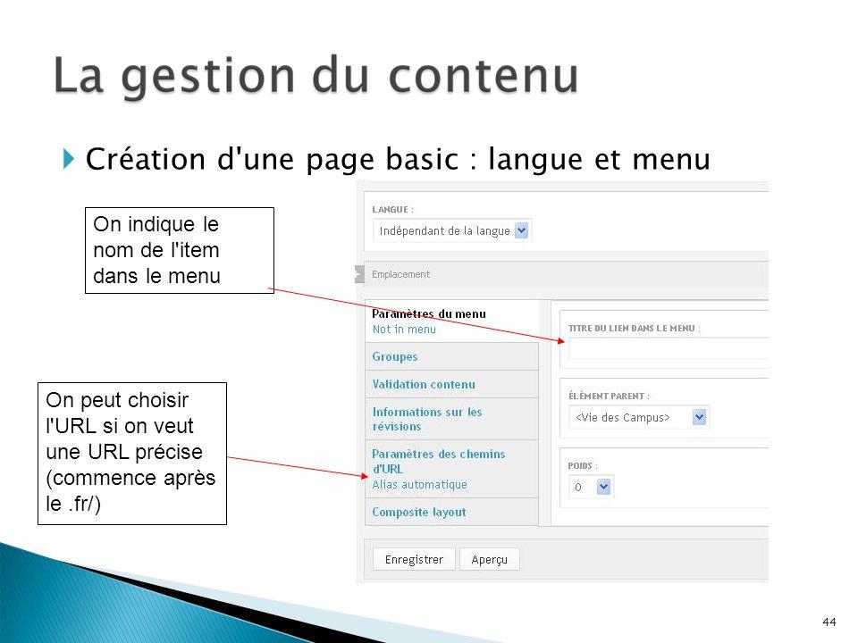 Création d'une page basic : langue et menu 44 On indique le nom de l'item dans le menu On peut choisir l'URL si on veut une URL précise (commence aprè
