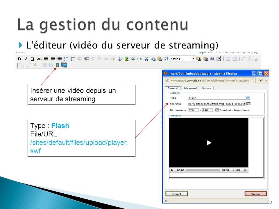 Insérer une vidéo depuis un serveur de streaming L'éditeur (vidéo du serveur de streaming) 53 Type : Flash File/URL : /sites/default/files/upload/play