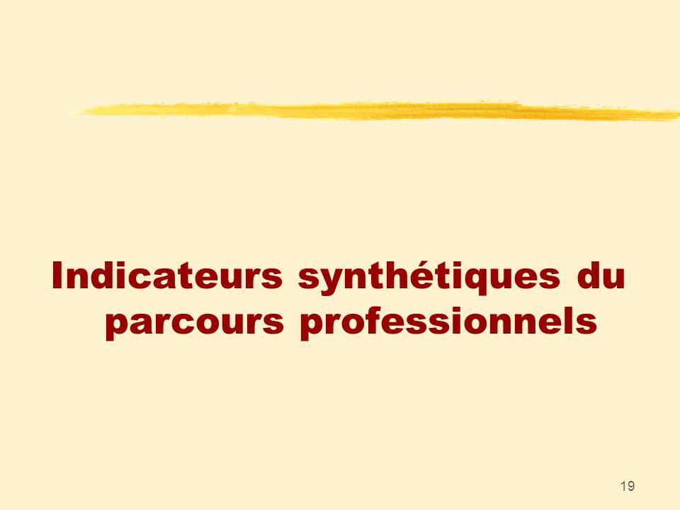 19 Indicateurs synthétiques du parcours professionnels