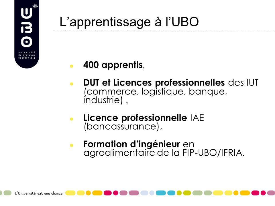 Lapprentissage à lUBO 400 apprentis, DUT et Licences professionnelles des IUT (commerce, logistique, banque, industrie), Licence professionnelle IAE (