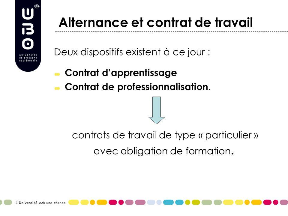 Alternance et contrat de travail Deux dispositifs existent à ce jour : Contrat dapprentissage Contrat de professionnalisation. contrats de travail de