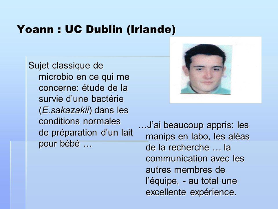 Yoann : UC Dublin (Irlande) Sujet classique de microbio en ce qui me concerne: étude de la survie dune bactérie (E.sakazakii) dans les conditions normales de préparation dun lait pour bébé … …Jai beaucoup appris: les manips en labo, les aléas de la recherche … la communication avec les autres membres de léquipe, - au total une excellente expérience.