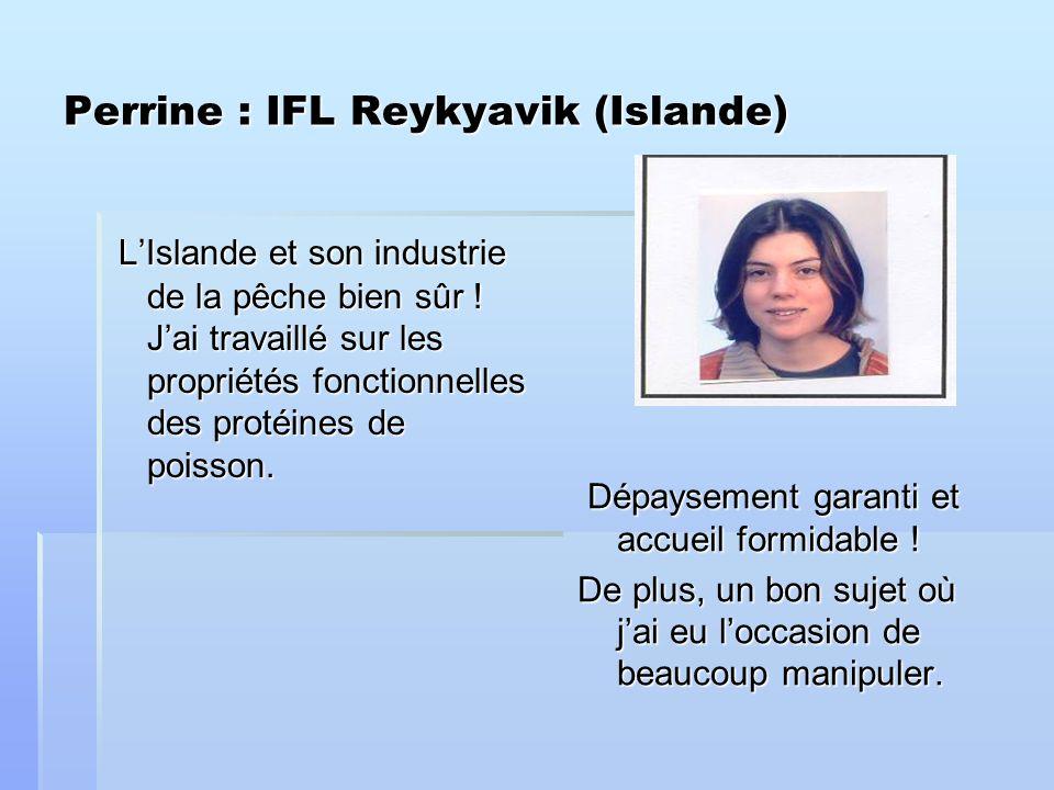Perrine : IFL Reykyavik (Islande) LIslande et son industrie de la pêche bien sûr .