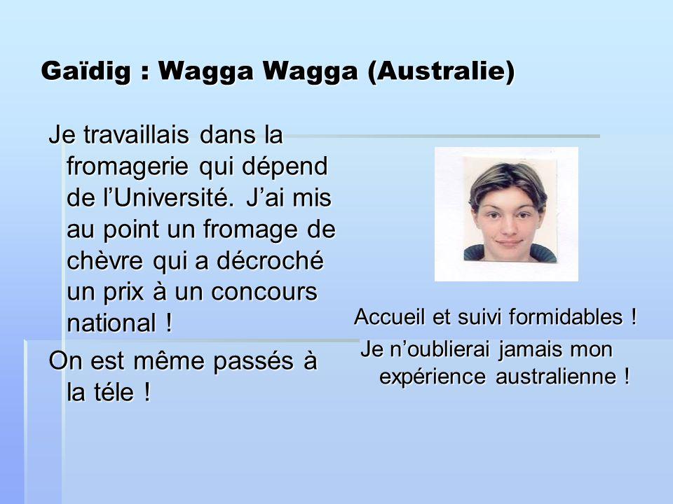 Gaïdig : Wagga Wagga (Australie) Je travaillais dans la fromagerie qui dépend de lUniversité.