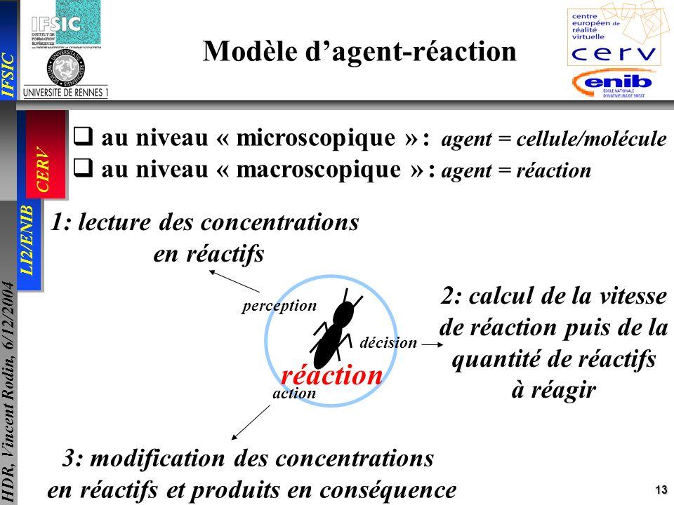 13 IFSIC LI2/ENIB CERV HDR, Vincent Rodin, 6/12/2004 au niveau « microscopique » : au niveau « macroscopique » : agent = cellule/molécule agent = réac