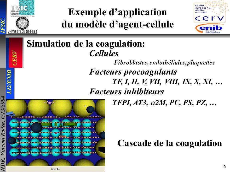 9 IFSIC LI2/ENIB CERV HDR, Vincent Rodin, 6/12/2004 Cellules Fibroblastes, endothéliales, plaquettes Facteurs procoagulants TF, I, II, V, VII, VIII, I