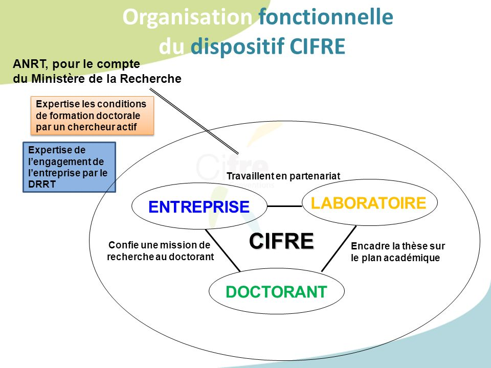 Organisation fonctionnelle du dispositif CIFREE ENTREPRISE LABORATOIRE DOCTORANT Confie une mission de recherche au doctorant Encadre la thèse sur le