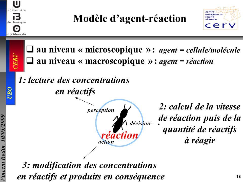 18 UBO CERV Vincent Rodin, 10/05/2009 au niveau « microscopique » : au niveau « macroscopique » : agent = cellule/molécule agent = réaction Modèle dag