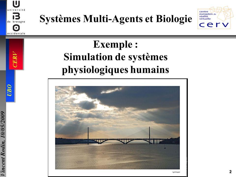 13 UBO CERV Vincent Rodin, 10/05/2009 Cellules Fibroblastes, endothéliales, plaquettes Facteurs procoagulants TF, I, II, V, VII, VIII, IX, X, XI, … Facteurs inhibiteurs TFPI, AT3, 2M, PC, PS, PZ, … Ia Exemple dapplication du modèle dagent-cellule Simulation de la coagulation: VII Cellule endothéliale F.W Fibroblaste + Facteur Tissulaire VIIa VIIXaIXaXaIXaXIXX VIIaIXXXaIXaVIII X X X VIIIa Va VV VIIa II Ia Pa P PP I IIVIIIa Xa Ia Va IIa Ia Pa Flux Cascade de la coagulation