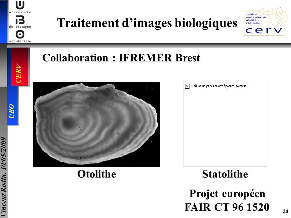 34 UBO CERV Vincent Rodin, 10/05/2009 Traitement dimages biologiques Collaboration : IFREMER Brest Projet européen FAIR CT 96 1520 Otolithe Statolithe