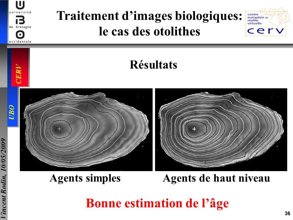 36 UBO CERV Vincent Rodin, 10/05/2009 Traitement dimages biologiques: le cas des otolithes Résultats Agents simples Agents de haut niveau Bonne estima