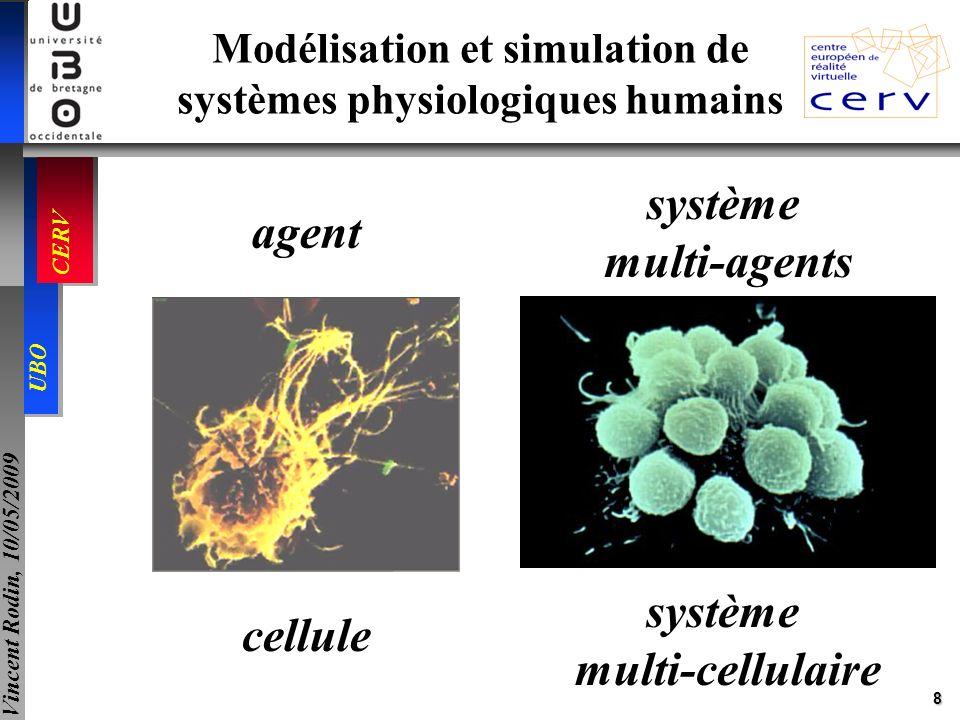 29 UBO CERV Vincent Rodin, 10/05/2009 Agent interface Agent réaction ActivitéSimulateur * Phénomène (organisation) Composant Agent interaction * * * Agent cellule Agent organe Modèle générique dagent-interaction