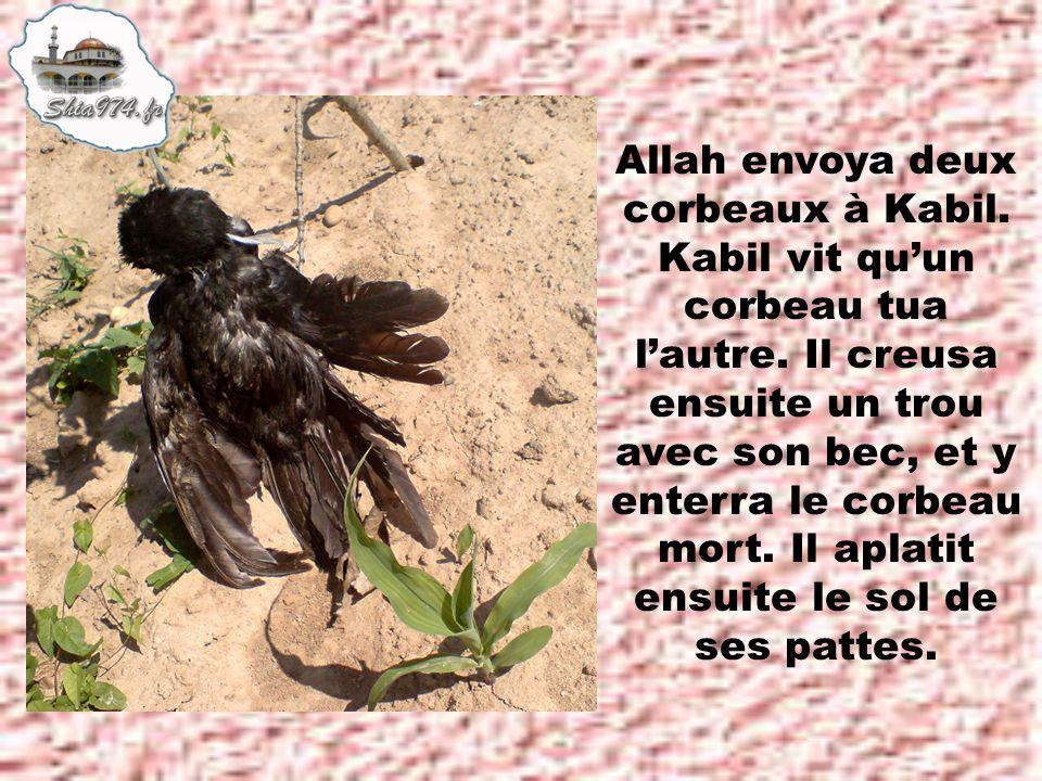 Allah envoya deux corbeaux à Kabil.Kabil vit quun corbeau tua lautre.