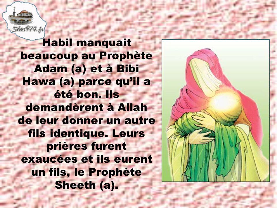 Habil manquait beaucoup au Prophète Adam (a) et à Bibi Hawa (a) parce quil a été bon.