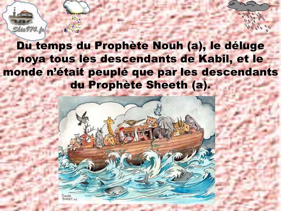 Du temps du Prophète Nouh (a), le déluge noya tous les descendants de Kabil, et le monde nétait peuplé que par les descendants du Prophète Sheeth (a).
