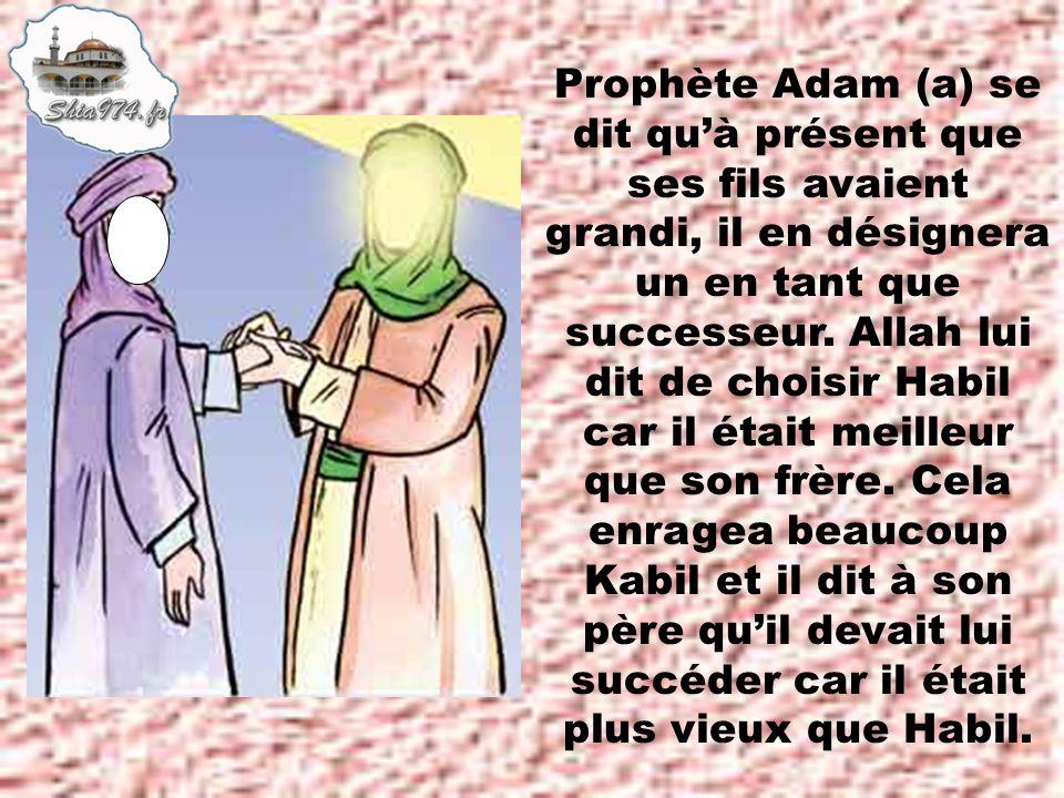 Prophète Adam (a) se dit quà présent que ses fils avaient grandi, il en désignera un en tant que successeur.