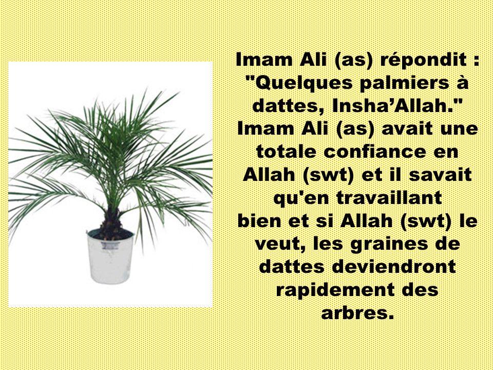 Voici un hadith dImam Ali (as) : Un jour, Imam Ali (as) transportait un lourd sac rempli de graines de dattes.