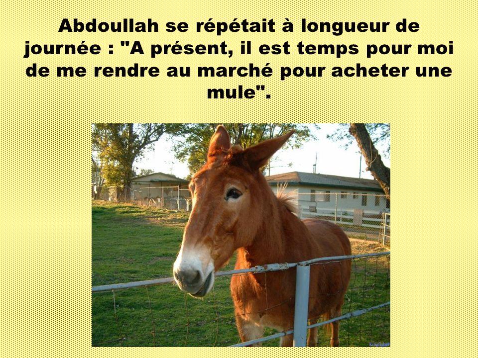Abdoullah était fermier. Il avait une belle ferme et il cultivait une grande variété de légumes.
