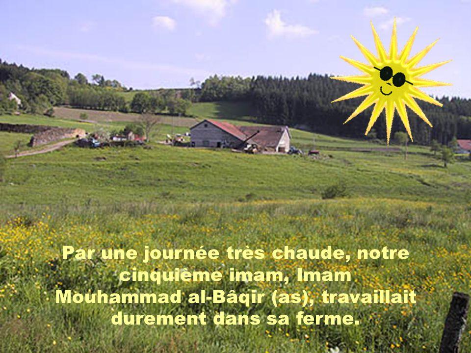 Par une journée très chaude, notre cinquième imam, Imam Mouhammad al-Bâqir (as), travaillait durement dans sa ferme.