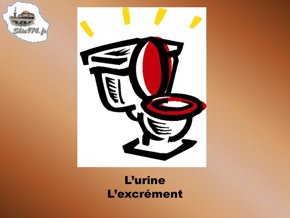 Après avoir uriné, la partie concernée du corps doit être lavée à leau deux fois (meilleur trois fois)