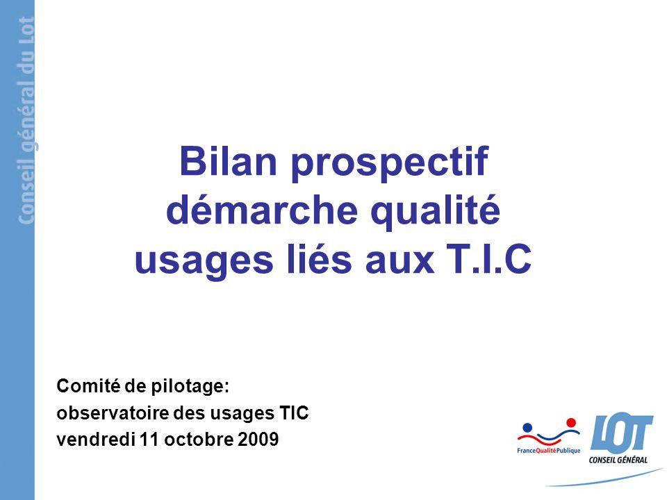 Bilan prospectif démarche qualité usages liés aux T.I.C Comité de pilotage: observatoire des usages TIC vendredi 11 octobre 2009