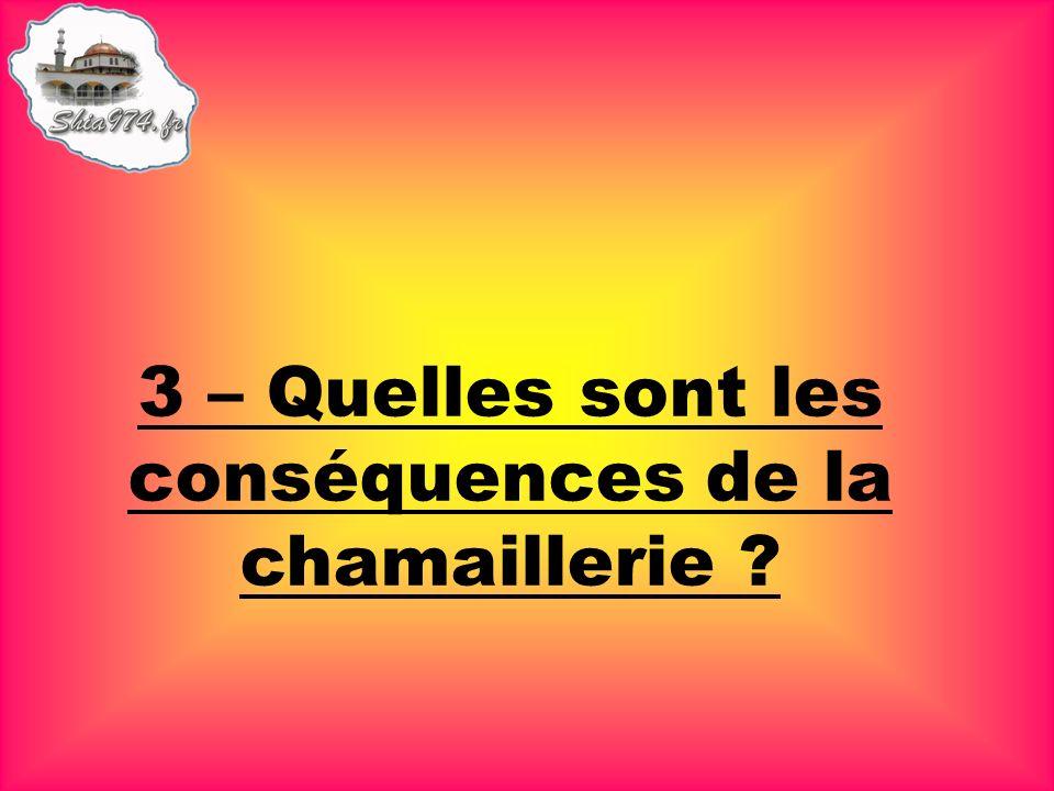 3 – Quelles sont les conséquences de la chamaillerie ?