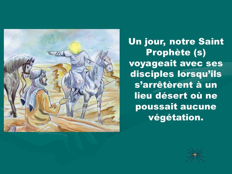Un jour, notre Saint Prophète (s) voyageait avec ses disciples lorsquils sarrêtèrent à un lieu désert où ne poussait aucune végétation.