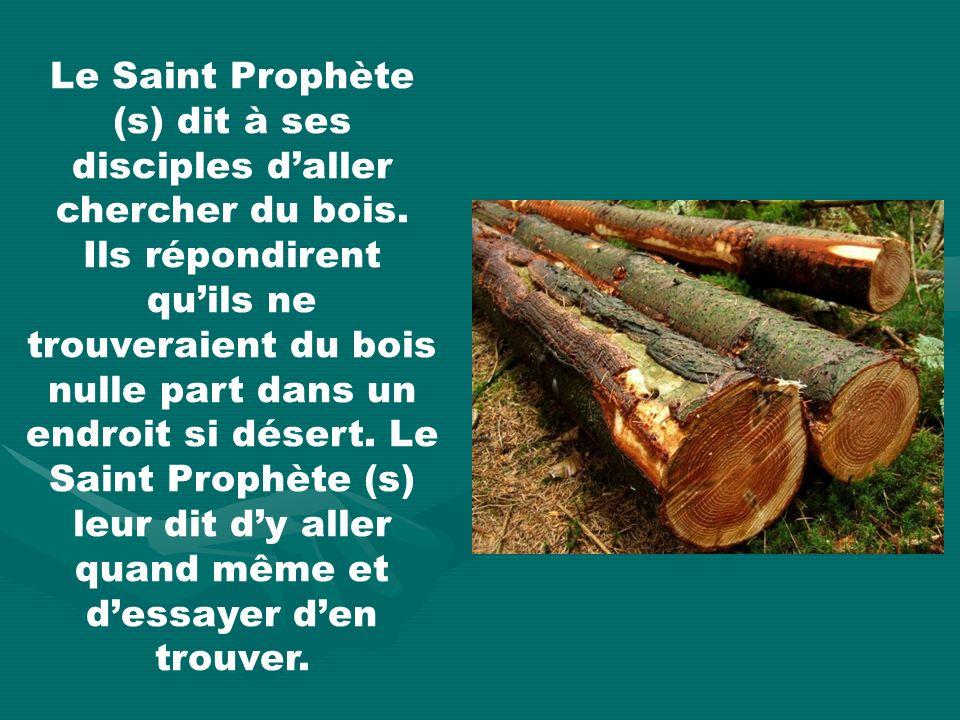 Le Saint Prophète (s) dit à ses disciples daller chercher du bois.