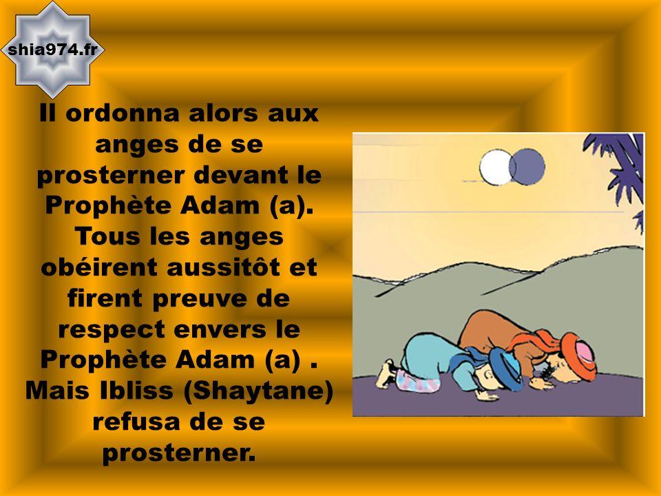 shia974.fr Il ordonna alors aux anges de se prosterner devant le Prophète Adam (a). Tous les anges obéirent aussitôt et firent preuve de respect enver