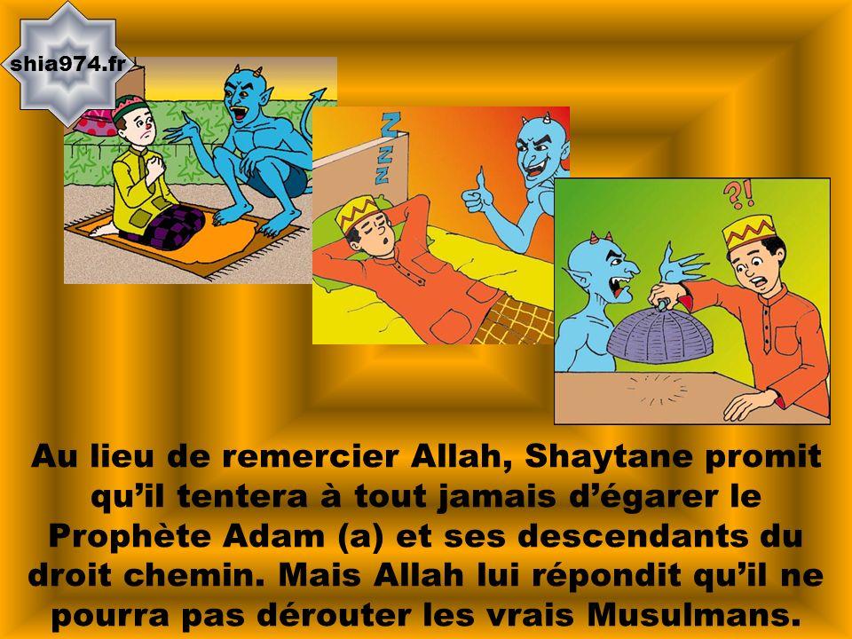 shia974.fr Au lieu de remercier Allah, Shaytane promit quil tentera à tout jamais dégarer le Prophète Adam (a) et ses descendants du droit chemin. Mai