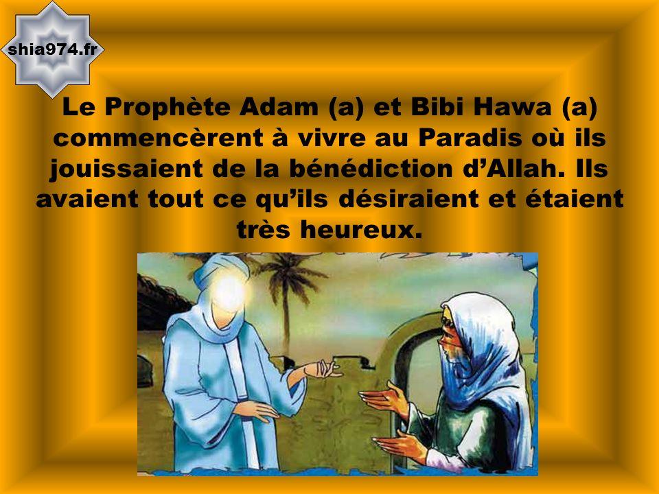 shia974.fr Le Prophète Adam (a) et Bibi Hawa (a) commencèrent à vivre au Paradis où ils jouissaient de la bénédiction dAllah. Ils avaient tout ce quil