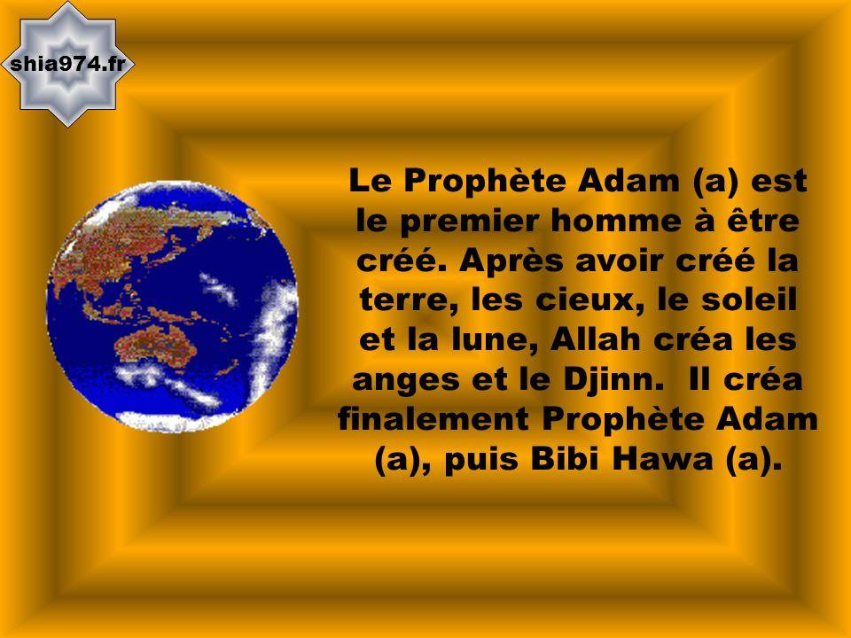 shia974.fr Le Prophète Adam (a) est le premier homme à être créé. Après avoir créé la terre, les cieux, le soleil et la lune, Allah créa les anges et