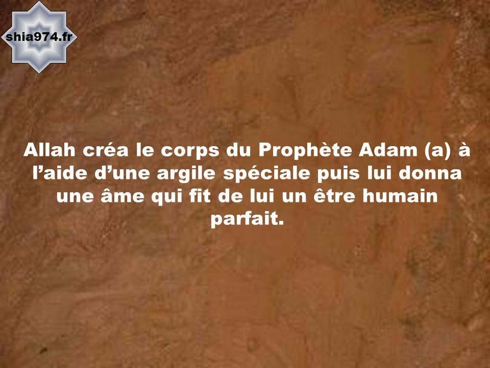 shia974.fr Allah créa le corps du Prophète Adam (a) à laide dune argile spéciale puis lui donna une âme qui fit de lui un être humain parfait.