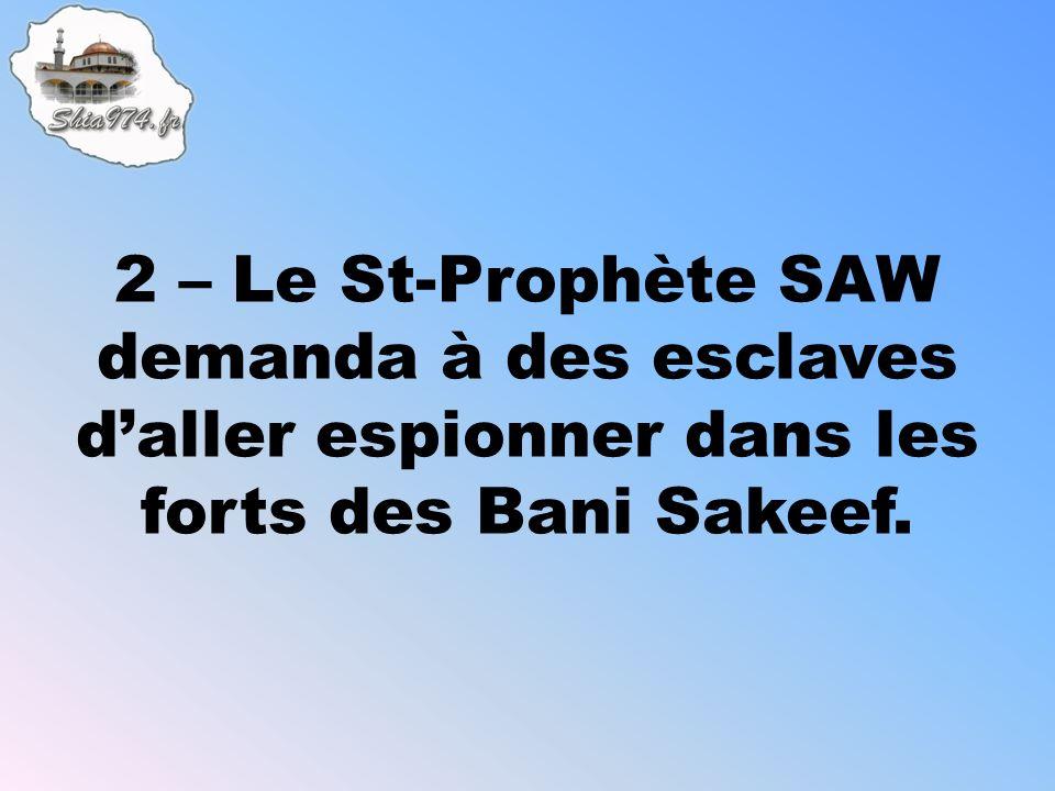 2 – Le St-Prophète SAW demanda à des esclaves daller espionner dans les forts des Bani Sakeef.