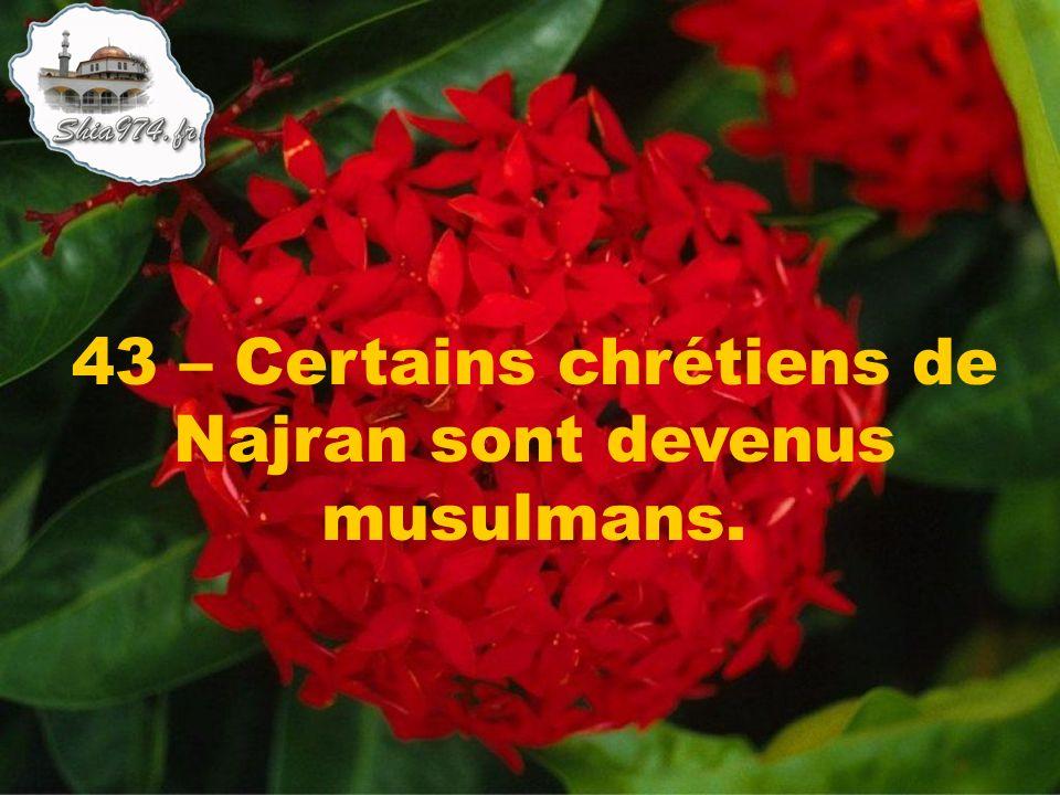 43 – Certains chrétiens de Najran sont devenus musulmans.